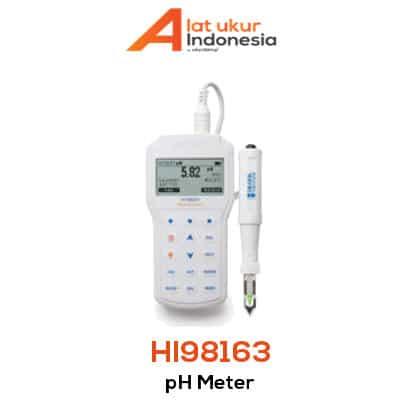 Alat Ukur pH Daging Portabel HANNA INSTRUMENT HI98163