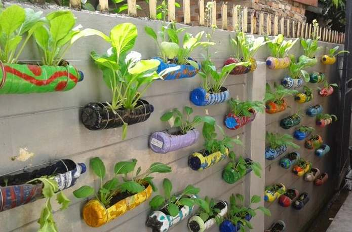 Cara Sederhana Berkebun di Rumah bagi Pemula