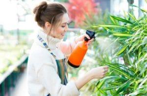pestisida alami