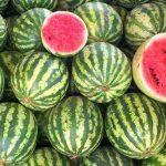 Cara memilih semangka manis